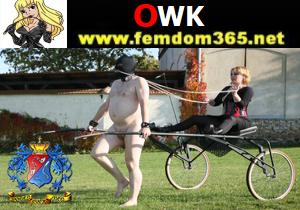 OWK Videos